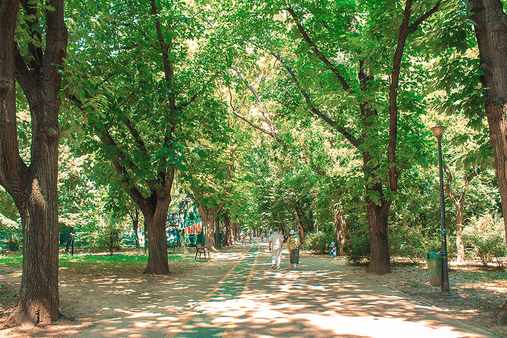 Park-Bucharest-3