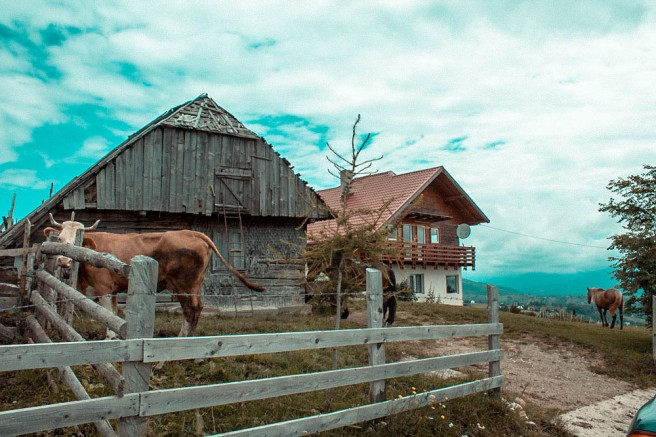 Pestera-Romania (13)