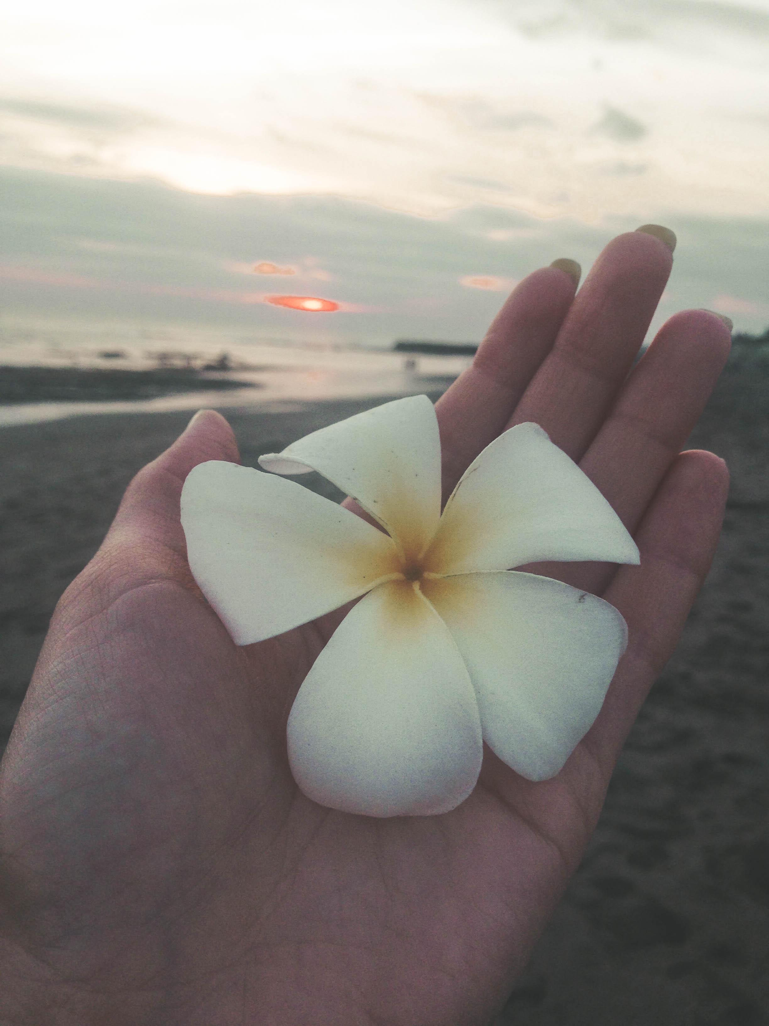 Bali (103)