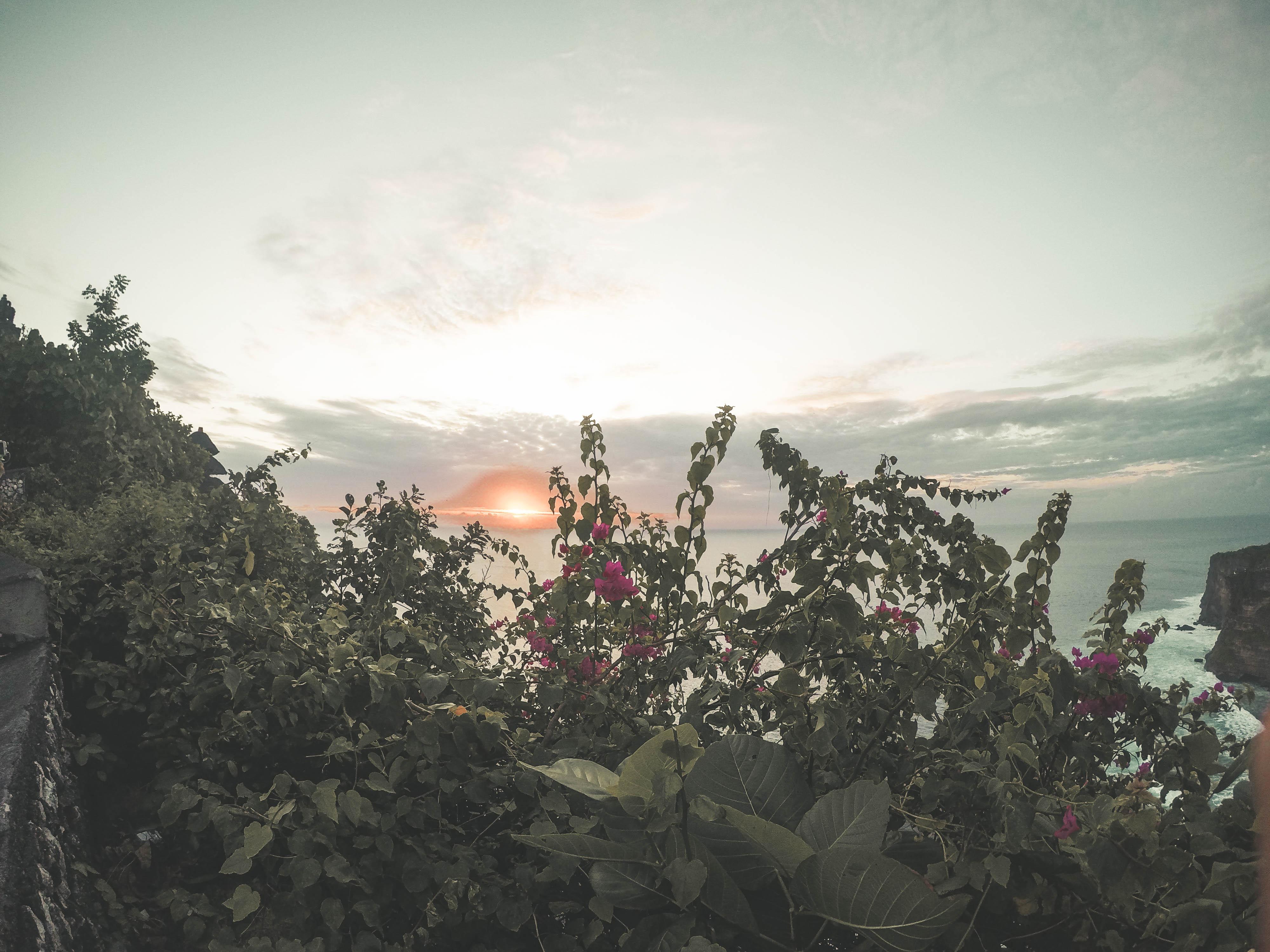 Bali (30)