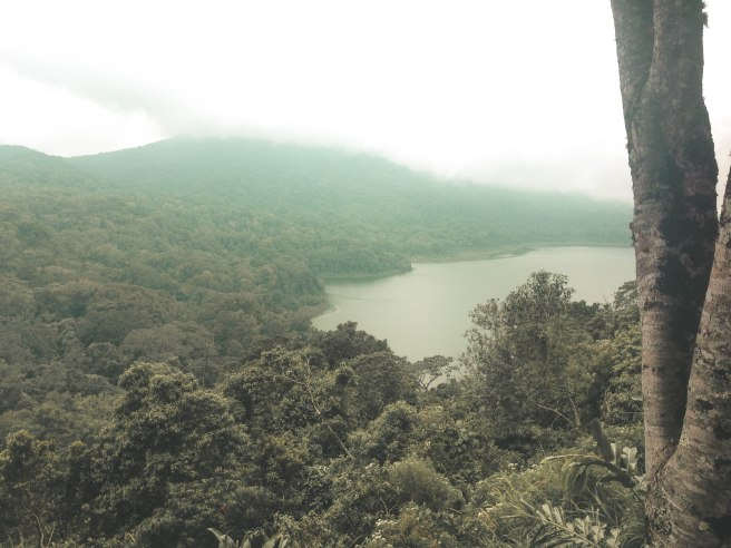 Bali (78)