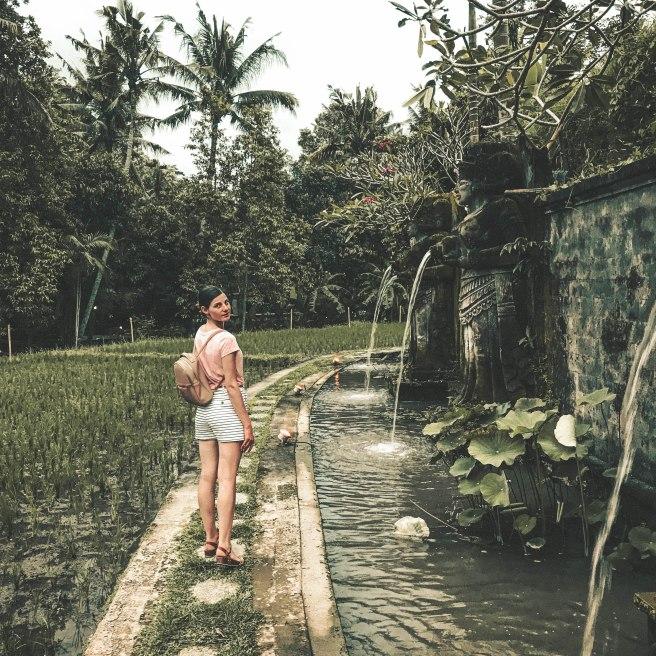 Bali (98)