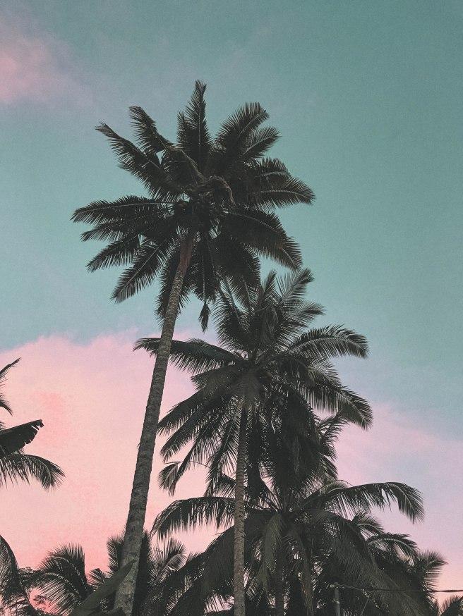 Bali (99)
